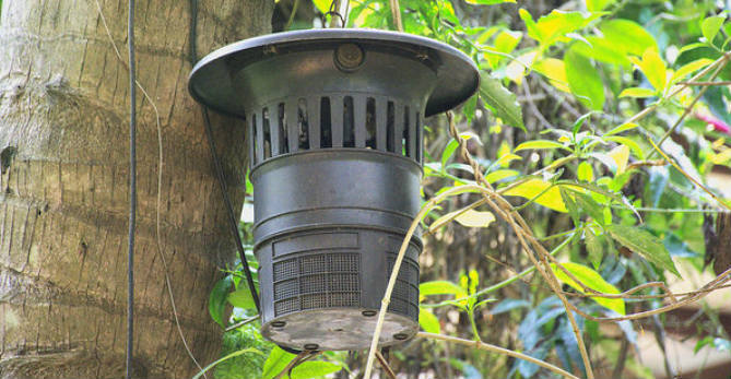 8 Best Mosquito Traps To Buy That Works Indoors